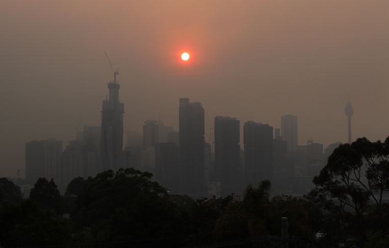 De skyline van Sydney. Veel inwoners hebben last van ademhalingsproblemen vanwege de rook. Beeld EPA