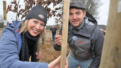 Roos van Acker meter van stukje Hallerbos: vrijwilligers planten liefst 22.000 bomen
