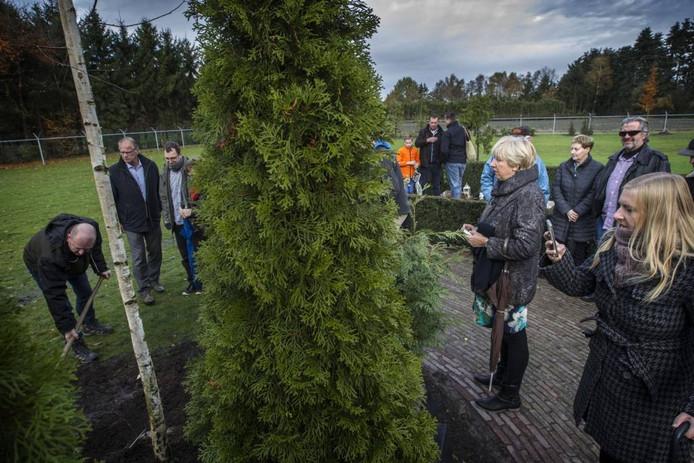Nabestaanden van Albert Scheerder planten de eerste boom, een ruwe berk, van het herinneringsbos.
