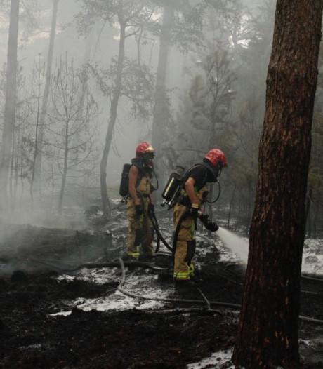 Brandweer heeft handen vol aan zeer grote bosbrand op de Nederheide