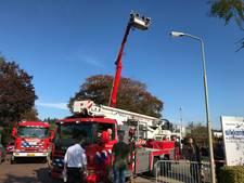 Drie mensen vast in hoogwerker van brandweer