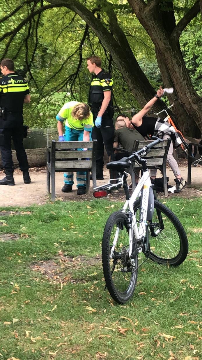Wilhelminapark, Tilburg