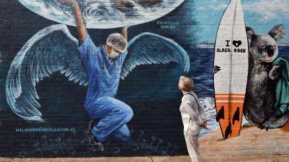 IN BEELD. Prachtige graffitikunstwerken in coronatijd