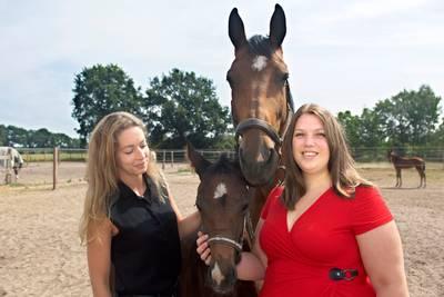 'Paarden'singles in Teteringen: na de site de speeddate