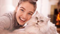 Hilarisch: Snapchat lanceert filters voor kattenselfies