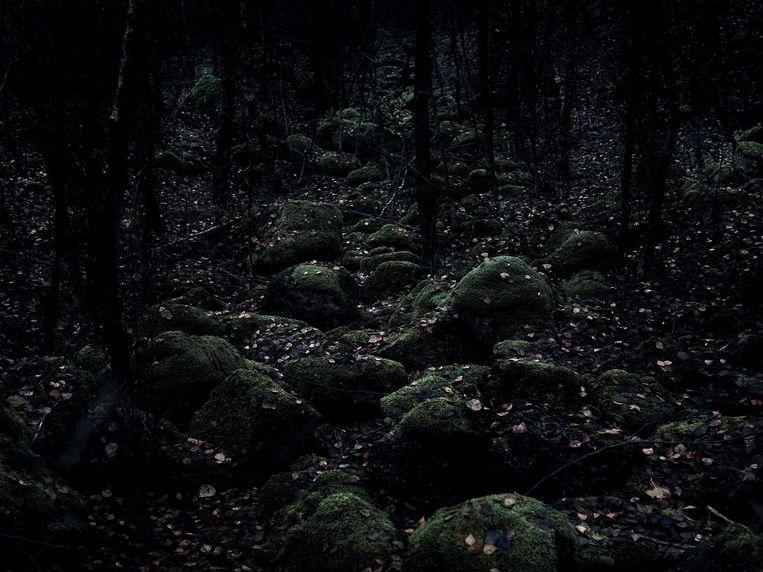 Mark Nettenbreijers: Uit de serie The Remains of Time, 2012 Beeld -