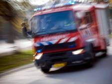 Klein natuurbrandje in Soest snel geblust