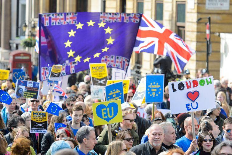 Protestactie tegen de geplande brexit in maart dit jaar. De Britse regering staat onder druk om haar plannen voor een harde brexit te temperen.