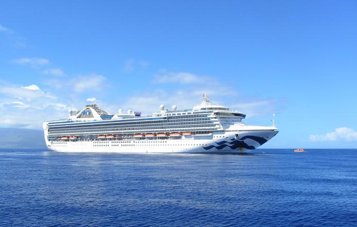 Veel cruiseschepen maken de reizen niet af of blijven noodgedwongen in de havens.