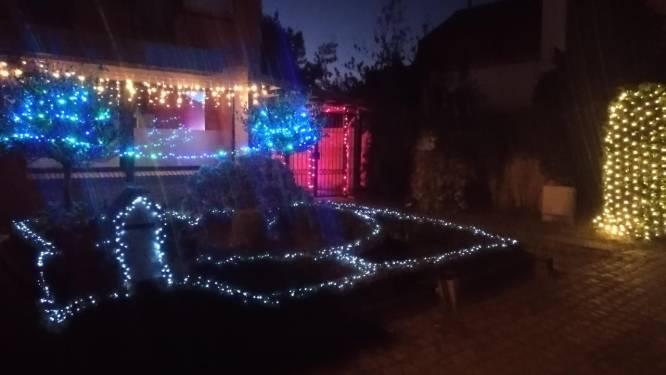 #zorgvoorlicht: 170 meter ledlampjes kleuren tuin in Leentjesweg