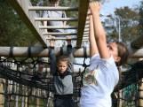 Kinderen zijn op survivalbaan lekker met natuur bezig