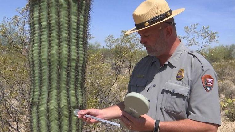 Parkwachter Ray O'Neil laat zien hoe het systeem met de microchips werkt.