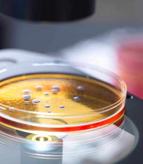 Sclérose en plaques: des chercheurs néerlandais pensent avoir fait une avancée