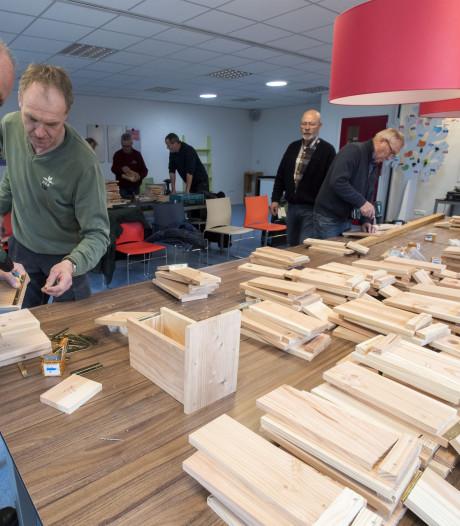 Rozendaal plaatst mezenkasten in strijd tegen eikenprocessierups