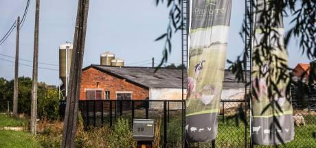 Belgische leverancier fipronil strafrechtelijk vervolgd om eierschandaal