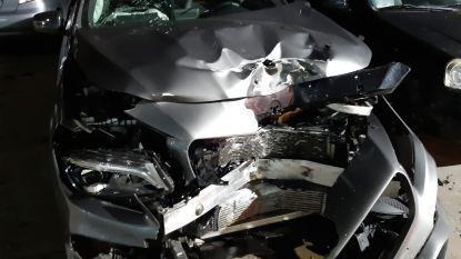 Wagen en motorfiets rijden frontaal tegen elkaar: motard gewond