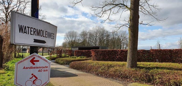 De man werd betrapt in de Watermolenweg in Meersel-Dreef, een gehucht in Hoogstraten.