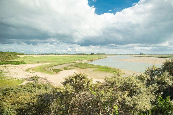 Het vernieuwde uitgebreide natuurpark Het Zwin.
