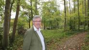 Boutersem plant 'Bos van de Hoop'