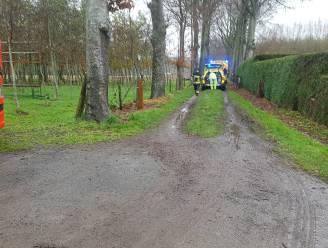 Mountainbiker gereanimeerd in Jabbeke