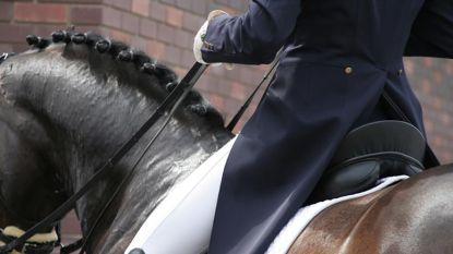 250 paarden aan de start van eerste nationale eventingwedstrijd CNC Wortegem-Petegem