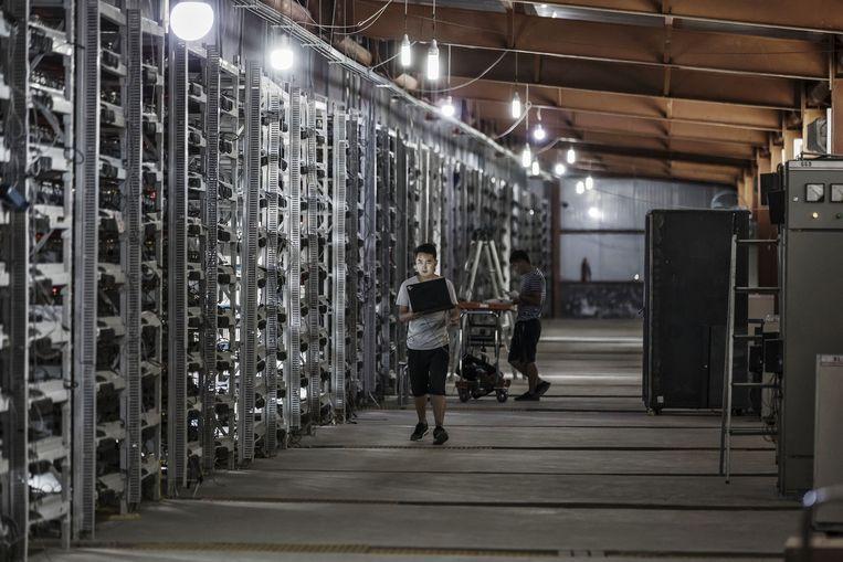 Technici inspecteren bitcoinproducerende computers in Chinees Mongolië.  Beeld null