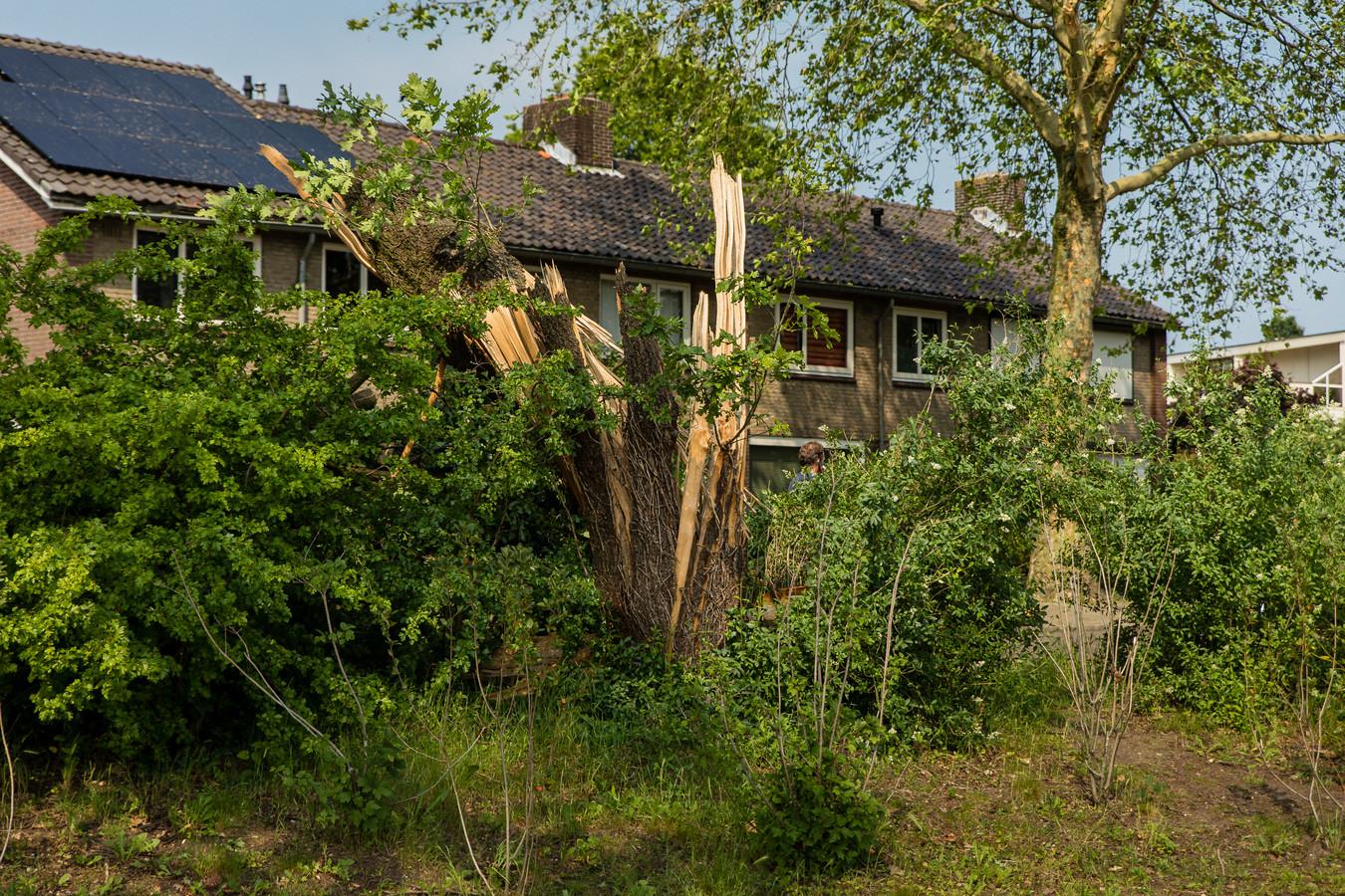 Stormschade in Rheden, veroorzaakt door de tornado die een spoor van vernieling achterliet.