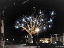 Mooie kerstboom in De Horst zonder subsidie