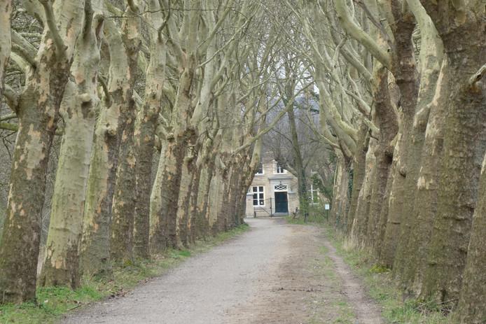 Huize Haanwijk helemaal gerestaureerd met nu een horecafunctie.