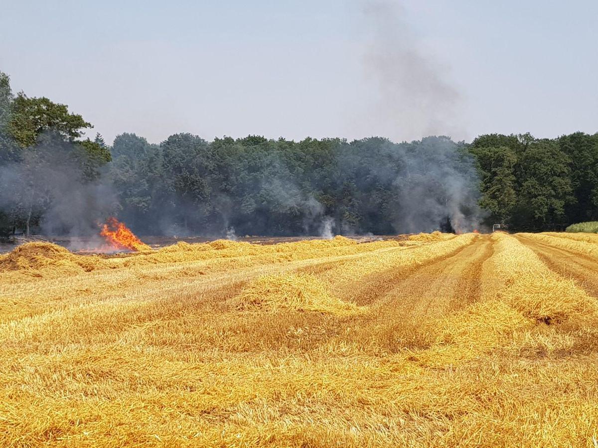 Een akker aan de Vreehorstweg in Winterswijk staat donderdag in brand. In verband met de droogte is de brandweer groot uitgerukt.