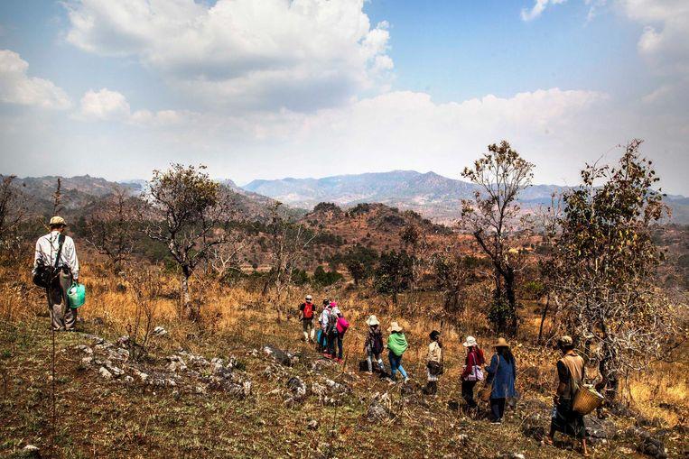 Samen wandelen in Myanmar Beeld Aurelie Geurts