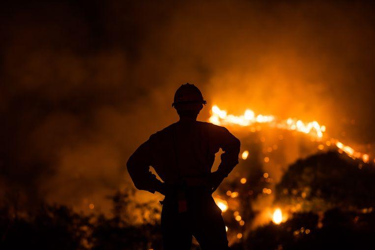 Een bosbrand in Californië. Beeld Hollandse Hoogte / AFP
