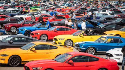 Wereldrecord! 1.326 Ford Mustangs vormen langste parade ooit in Lommel