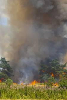 Pool (37) vrijgesproken van stichten van brand op Park De Hoge Veluwe