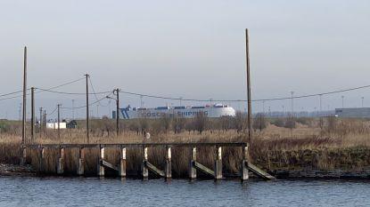 Milieuvereniging verzet zich tegen komst kaaimuur  en breder Boudewijnkanaal