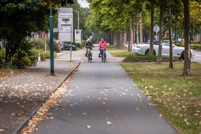 Het fietspad aan de Burgemeester Mollaan in Waalre.
