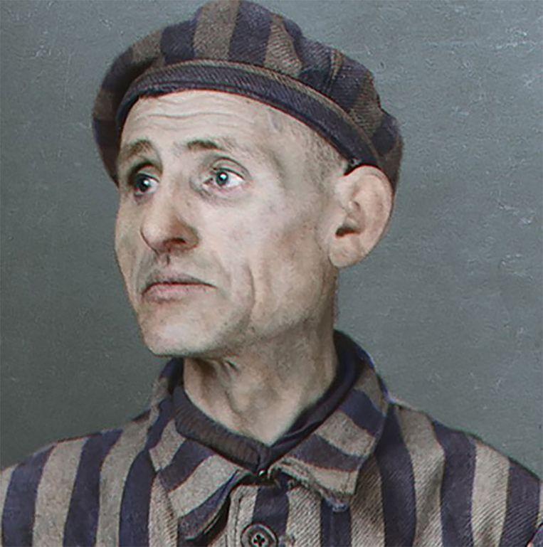Salomon Honig