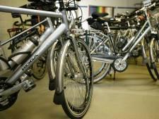 Nederland telt steeds meer fietsenwinkels: e-bike neemt vlucht