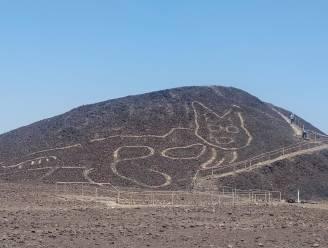 Archeologen vinden enorme kattentekening op heuvel in Peru