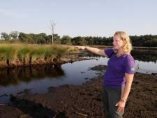 Vennen kunnen nog heel wat regenbuien gebruiken na extreme droogte