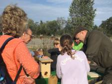 Festival Steengoed in Udenhout 'pakt keigoed uit'