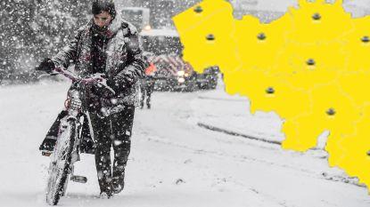 Tot 10 centimeter sneeuw: KMI kondigt 'code geel' af, ontdek hier hoeveel er bij jou  voorspeld is
