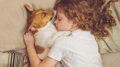 Slapen met je huisdier is ongezond JA!
