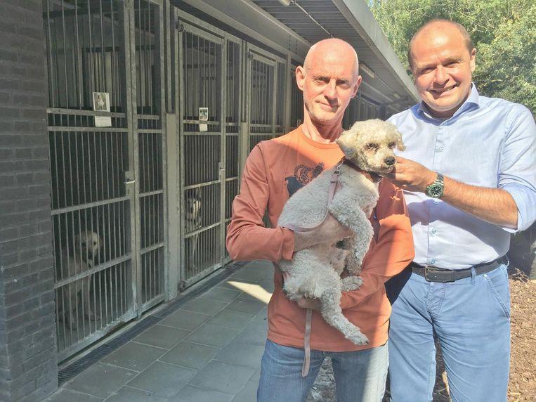 Johan Lingier en Fabrice Goffin bij de tjokvolle hokken van dierenasiel het Blauwe Kruis van de Kust .