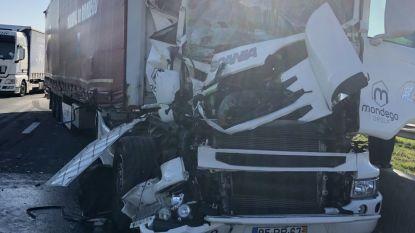 Ongeval met vrachtwagens op E19 in Loenhout