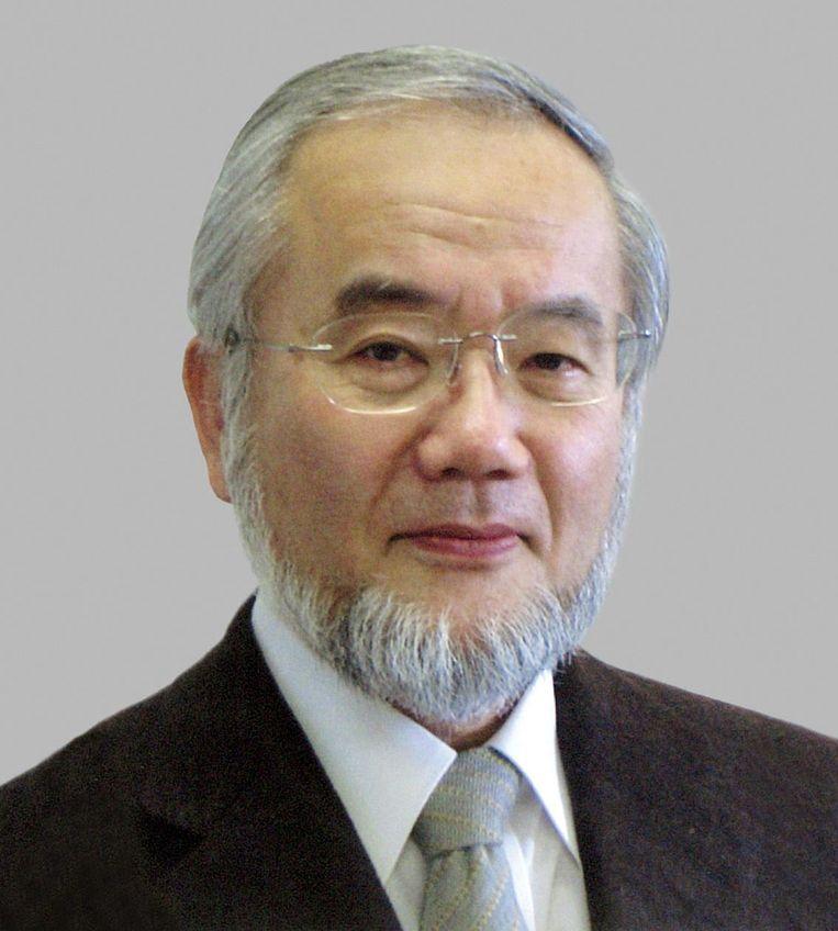 Yoshinori Ohsumi Beeld ANP