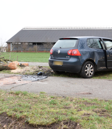 Man (28) uit Helmond overleden na botsing tegen boom in Hilvarenbeek