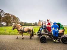 Dag Sinterklaasje, dahag! Politie snijdt koets Sint en haalt hem van de weg in Neede