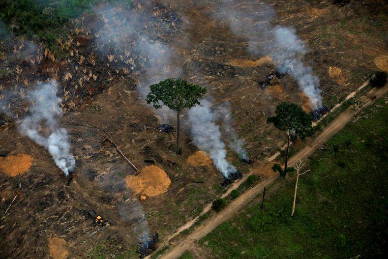 De vernietiging van het Amazonegebied is sterk toegenomen tijdens de coronapandemie.