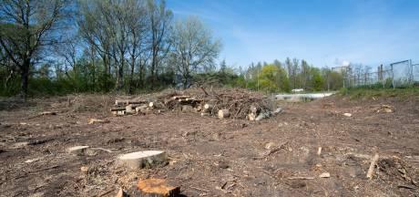 Grootschalige bomenkap bij Geertruidenberg is illegaal, mogelijk strafrechtelijk vervolg